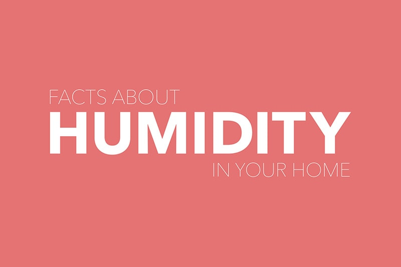 facts about humidity in your home